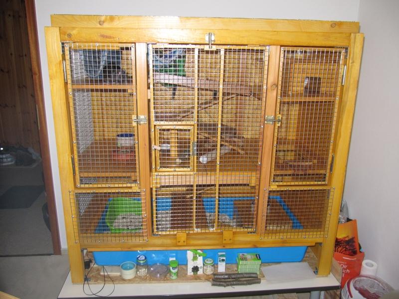 Rattenkäfig Selbstgebaut Selber Bauen Nagerkäfig Nagerstall